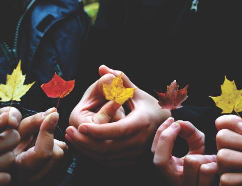 Prendersi cura della persona nella sua unicità: Studio Incipit
