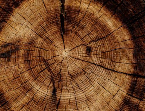 La versatilità del legno: Toscanini